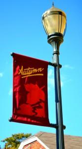 Rising Sun IN Autumn Flag