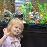 World Pet Association's Aquatic Experience Chicago #OMTravels