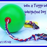 Tuggo Dog Toy #Giveaway (Ends 1/27)