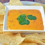 Slow Cooker Queso Dip from Optimistic Mommy
