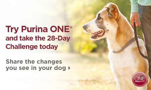 Purina One - Share The Changes