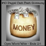 $40 PayPal Cash Flash Giveaway (Ends 2/1)