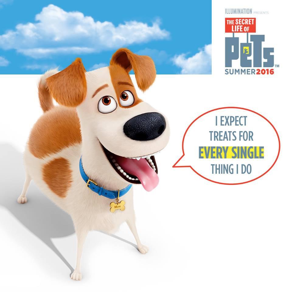 Pets-BigHeart-DogTreats