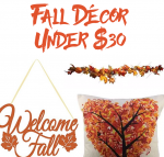 The Ultimate Roundup of Fall Decor Under $30