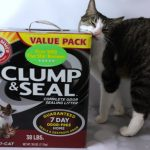 ARM& HAMMER™ CLUMP & SEAL™ Gives You a 7 Day Odor Free Home #CLUMPandSEAL