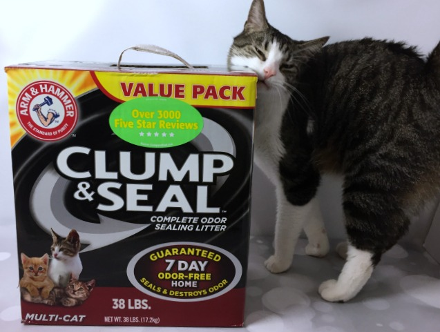 Enjoy Your Cats In An Odor Free Home Thanks To ARM & HAMMER CLUMP & SEAL Cat Litter | Optimistic Mommy