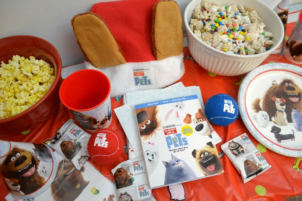 The Secret Life of Pets is available in stores now! Celebrate by having a fun movie night with your family!