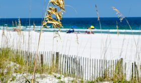 Lavish Life and Alabama Beaches