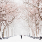 Visiting New York City in the Winter