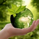 Go Green: 5 Ways on How to Educate Your Children