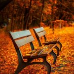 Fun Fall Activities for Kids to Do with Grandparents