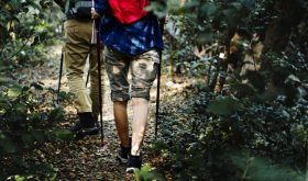 Essential Needs for a Successful Hike