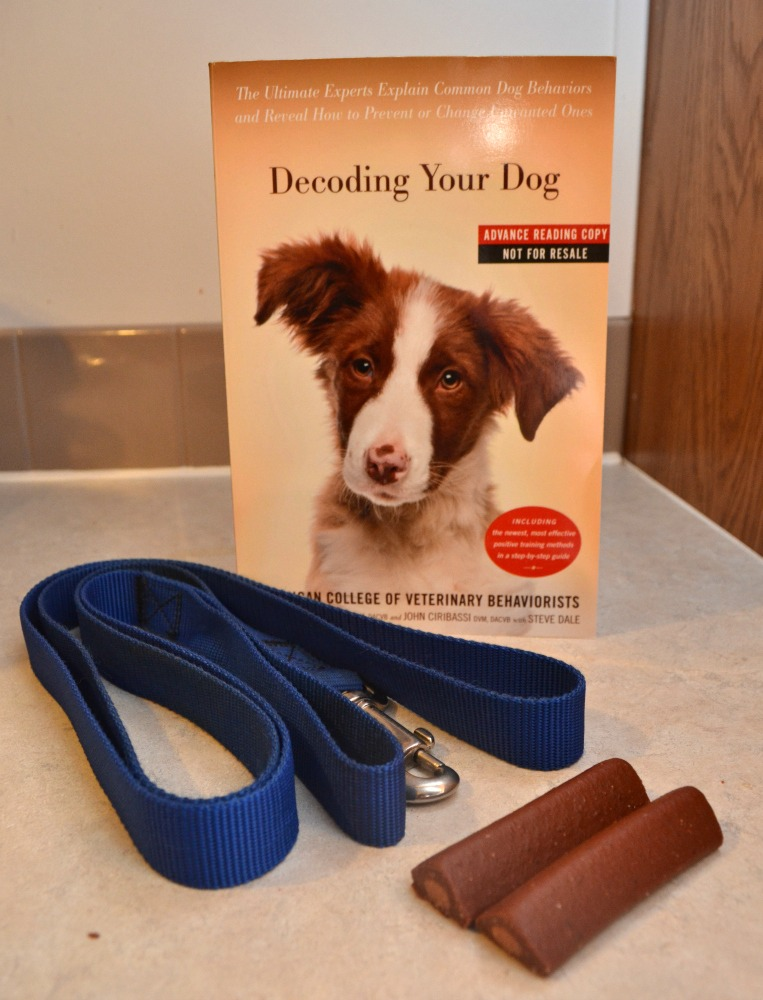 Decoding Your Dog Helps Explain & Change Dog Behaviors
