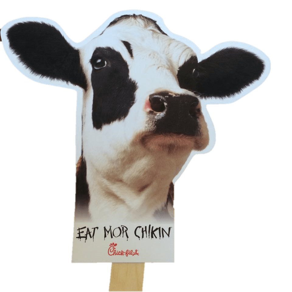 Summer Fun Starts at Chick-fil-A Houston Road!   Optimistic Mommy