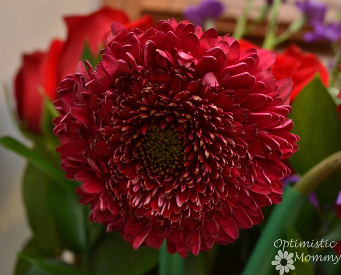The Best Of Me Book & ProFlowers Bouquet | Optimistic Mommy