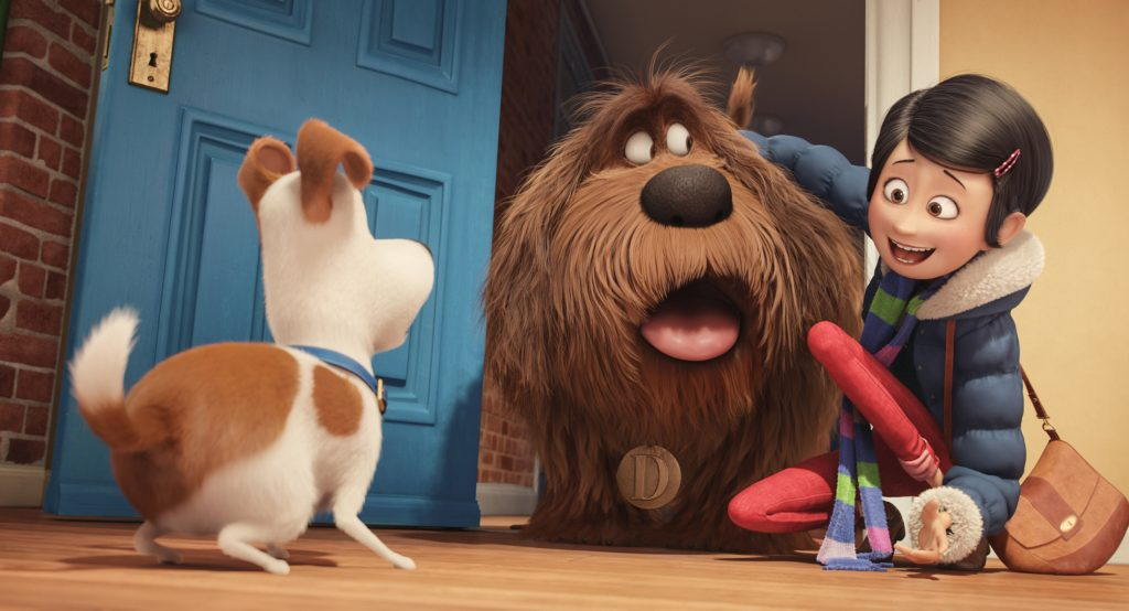 The Secret Life of Pets is now available on DVD, Blu-ray, and Digital HD!