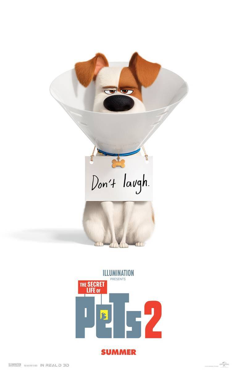 Max wearing a cone and don't laugh sign on the poster for The Secret Life of Pets 2.