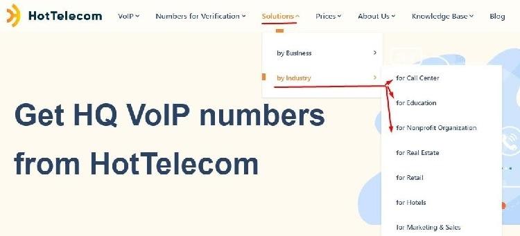 Get VoIP Number